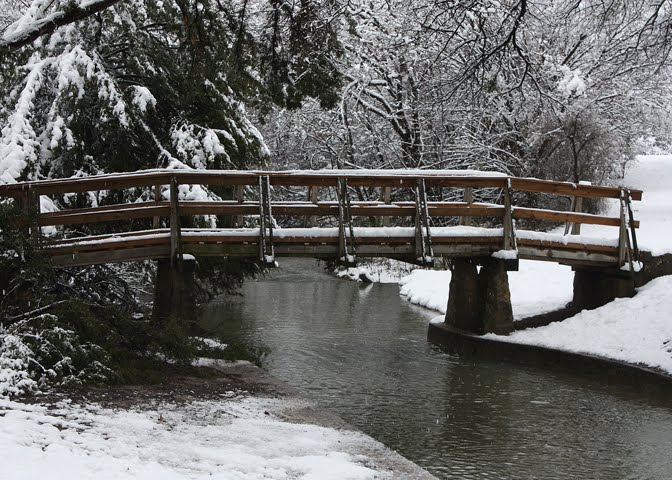 Grapevine Springs Park Bridge