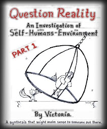 Question Reality the Manuscript