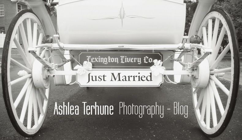 Nashville Wedding Photographer - Ashlea Terhune Photography