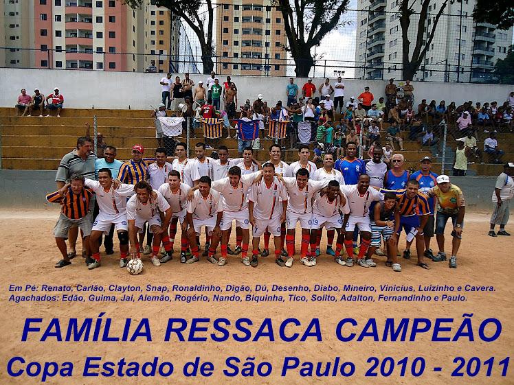 Copa Estado de São Paulo 2010 - 2011