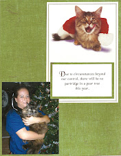 The Cat's Christmas Card