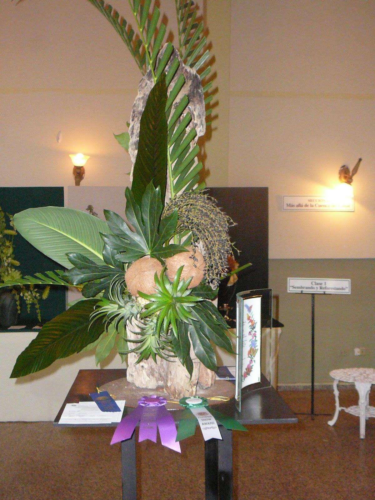 Arreglos florales creativos arreglos creativos d o - Arreglos florales creativos ...