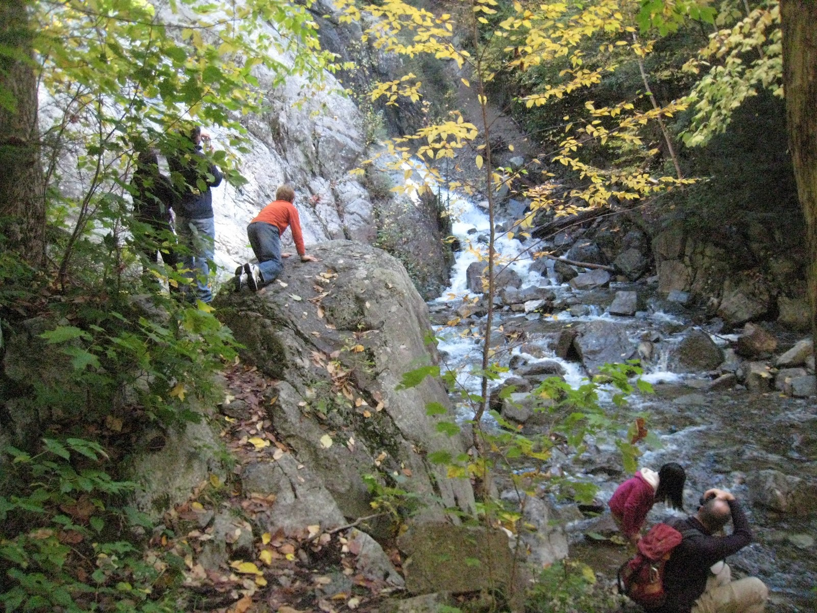 Easy Short Adirondack (ADK) hikes: Roaring Brook Falls ...