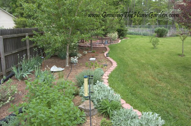 Landscaping the Backyard - Home Remodeling Contractors - View