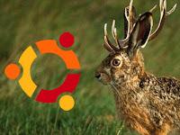 Aggiornamenti di Sicurezza importanti per Ubuntu 9.04 Jaunty Jackalope, seconda parte
