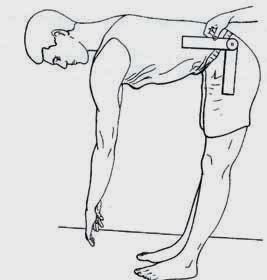 Flexão coluna lombar
