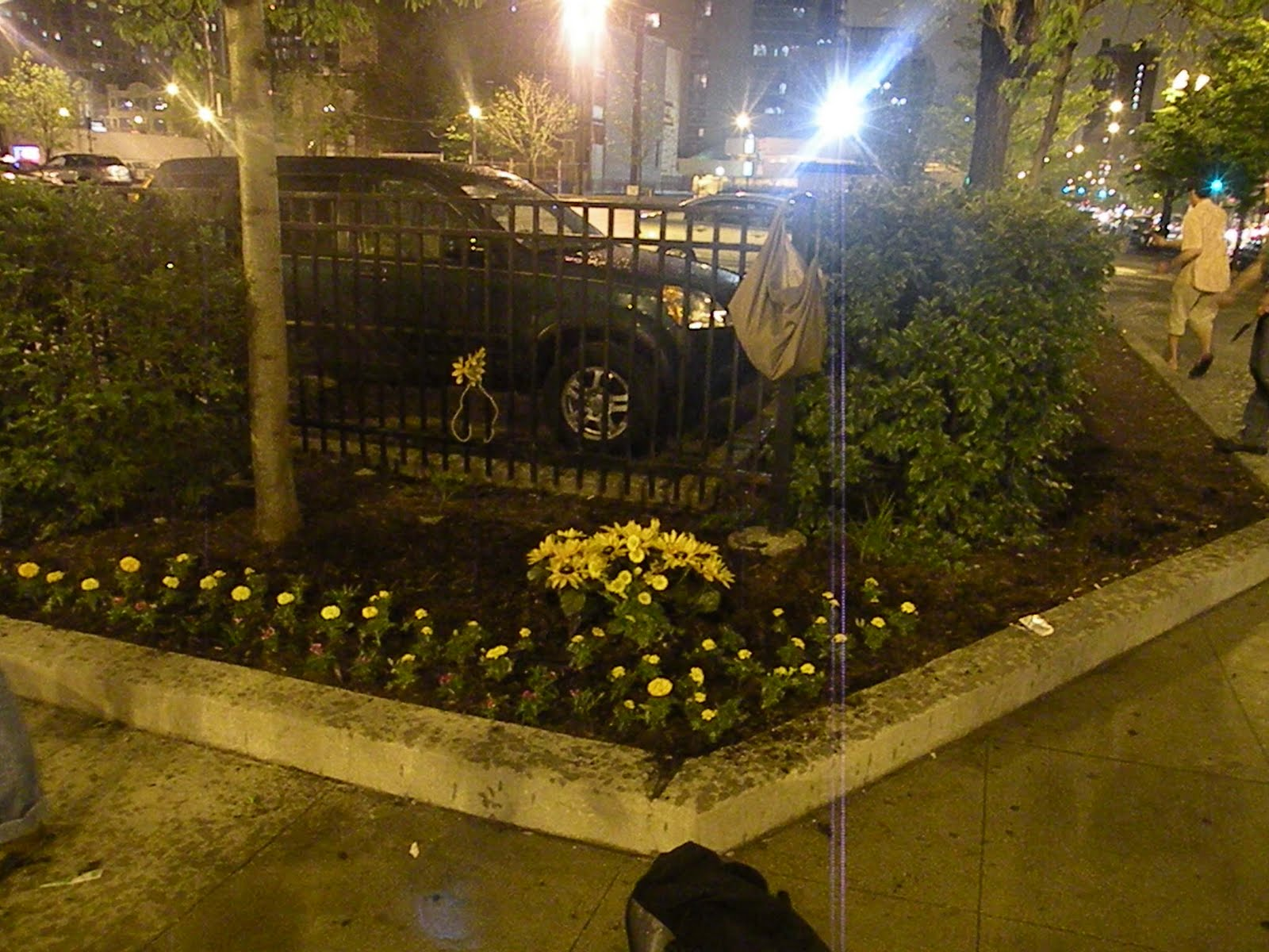 down and dirty: guerrilla gardening in chicago