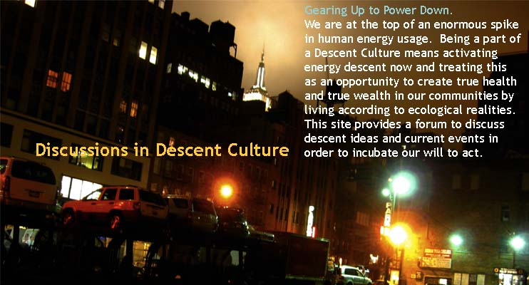 Discussions on Descent Culture