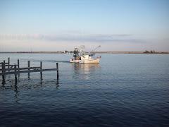 Shrimper off Apalachicola