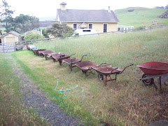 World famous wheelbarrow collection