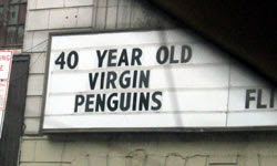 40 Year Old Virgin Penguins