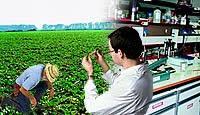 Το πλαίσιο για την επίτευξη ορθολογικής χρήσης των γεωργικών φαρμάκων