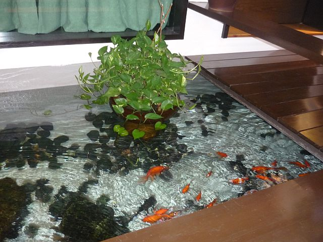 Indoor fish pond in your living room pictures for Indoor pond design