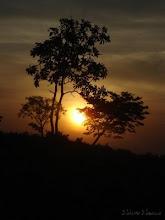 ** O Pôr do Sol **