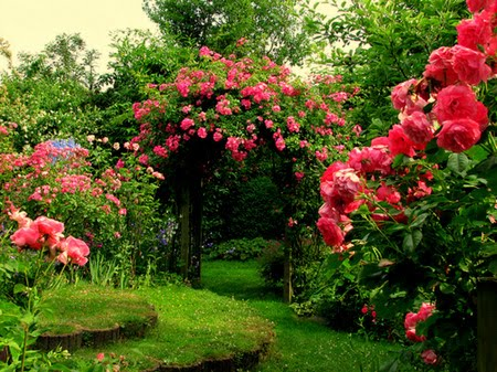Very Lovely Garden