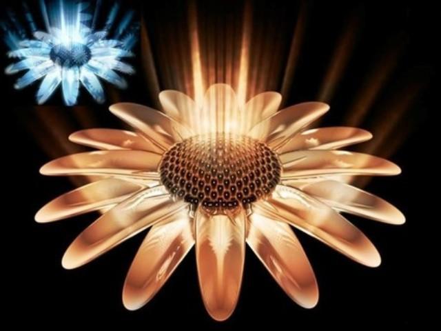 57666 - Digital Flowers