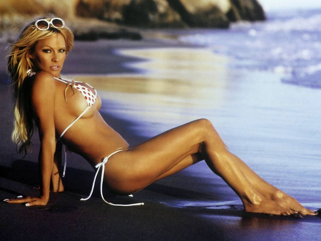 Peartreedesigns pamela anderson sexy wallpapers for Todays best photos
