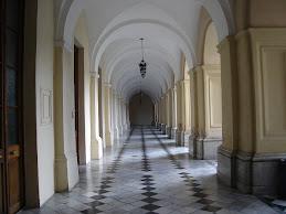 Universidad de Córdoba: Claustros