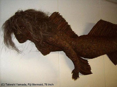 [Image: fiji-mermaid-76.jpg]