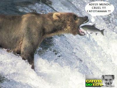 http://1.bp.blogspot.com/_P5A-Vy9NnXA/Rx-a1XHqDpI/AAAAAAAAAH8/kXNnm_ANm8M/s400/peixe-owned_1.jpg