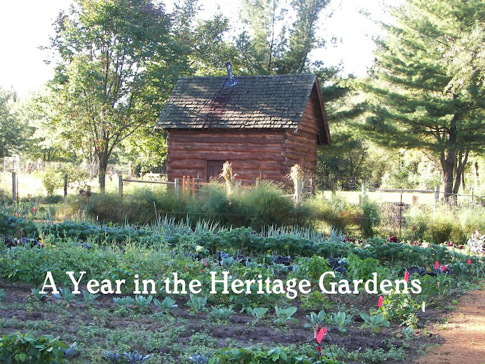 A Year In The Heritage Gardens