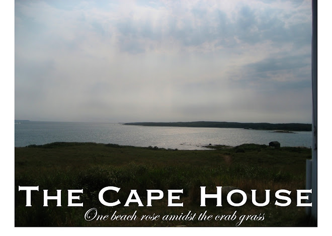 The Cape House