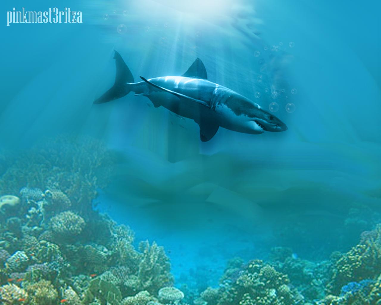photoshop tutorials how to create underwater scene using photoshop