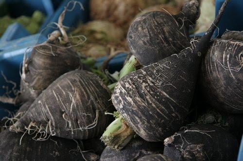 gruis galblaas