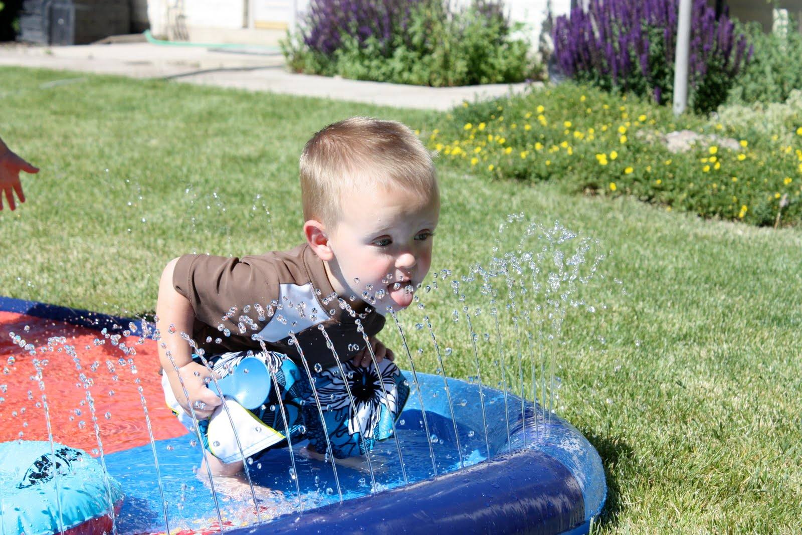 libby 39 s latest backyard water fun