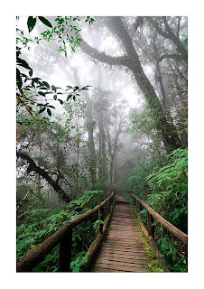 <br />Doi Inthanon National Park