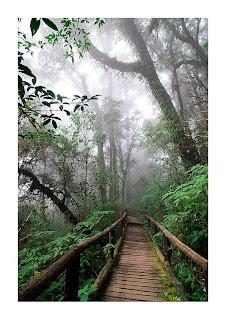 <br />Doi Inthanon National Park