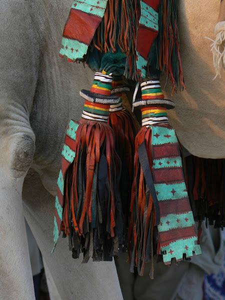 Decorations on a Camel Saddle