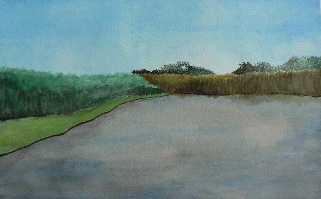 Okavango River Scene