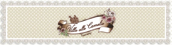 Villa alle Camelie - Holiday house in Tuscany