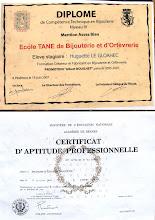 dipômes école TANE de bijouterie et d'orfèvrerie