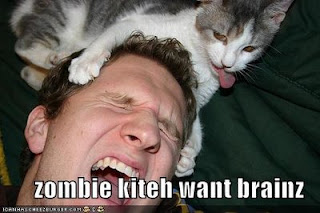 funny-pictures-zombie-kitten-cat.jpg