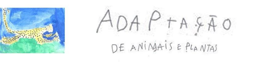 Adaptação de Animais e Plantas