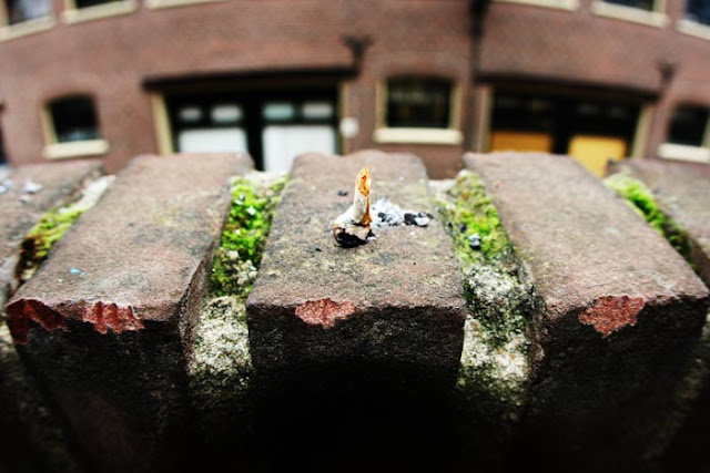 A big roach on bricks after smoking a joint on a hotel balcony in Leiden, Holland.