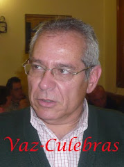 Vaz-Culebras