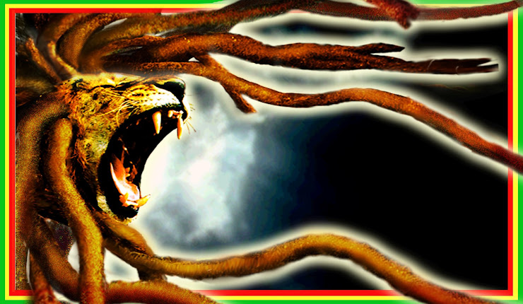 lion jud