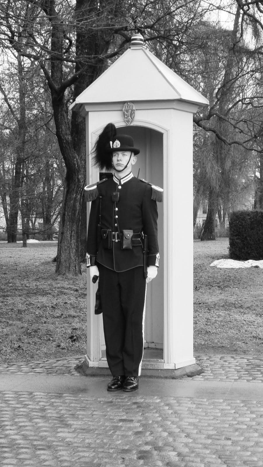 voyage en norv ge la garde royale s 39 il vous plait. Black Bedroom Furniture Sets. Home Design Ideas