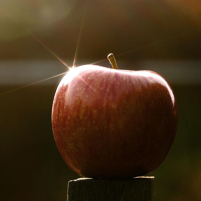 [apple]