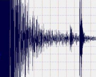Terremotos em tempo real