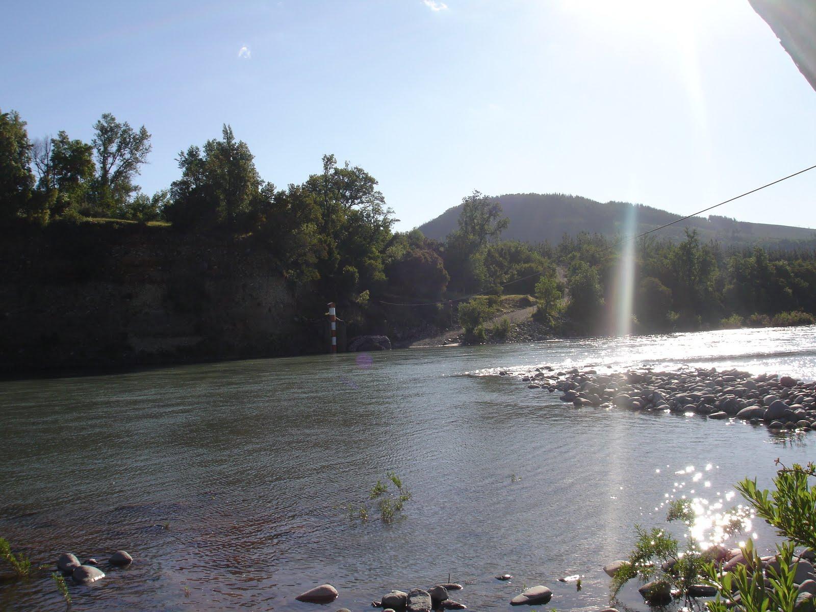 San fabi n de alico hermoso valle al pie de los cerros for Cactario santiago