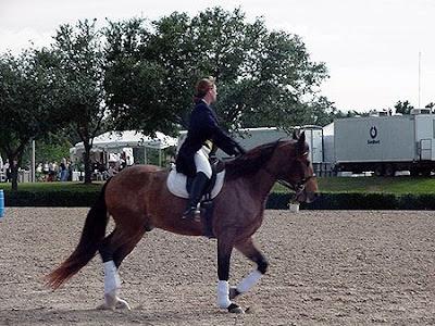 Mustang realizando ejercicio de doma clásica