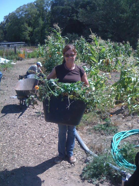 Harvesting Green material
