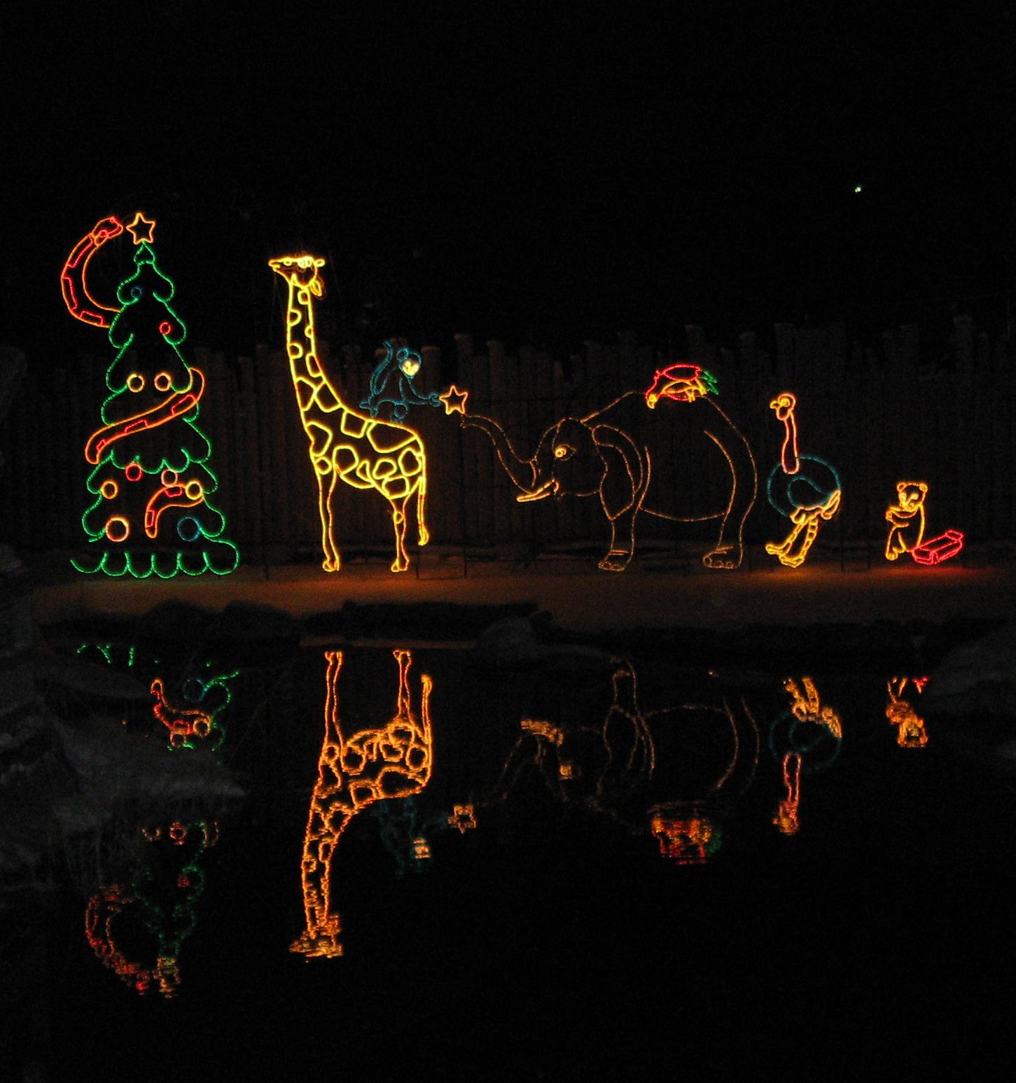 Zoo lights utah discount coupons