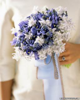 2 Azul & Branco!