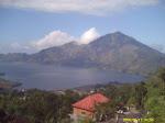 Bali villa rentals   Make money