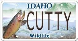 Idaho fly fishers idaho montana fishing fly fishing for Fishing license idaho